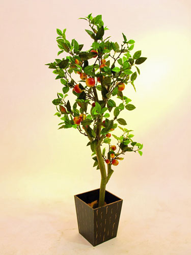 EUROPALMS 150cm Mini apple tree with cem, discoland.fi