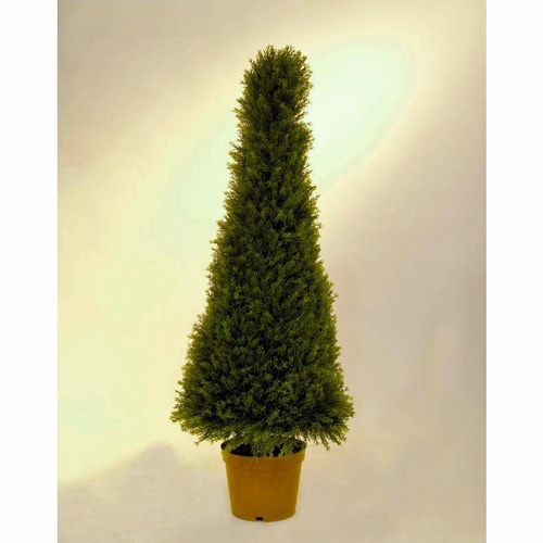 EUROPALMS 120cm Pyramidituija. Arborvitae tree - suitable for a modern decoration in a line-up