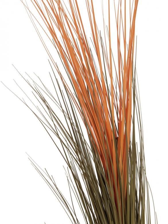 EUROPALMS 127cm Koristeruoho, väri vaaleanruskea