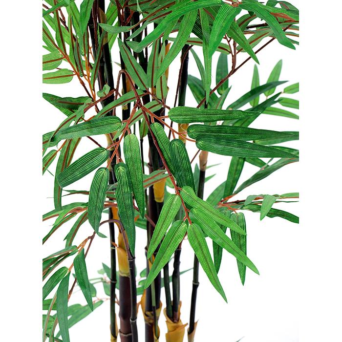 EUROPALMS 152cm Bambupuu mustilla tekorungoilla. Bamboo tree black trunk. Superior bamboo tree with dark trunks