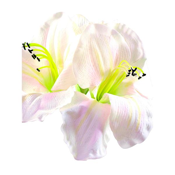 EUROPALMS 72cm Amaryllis valkoinen, white