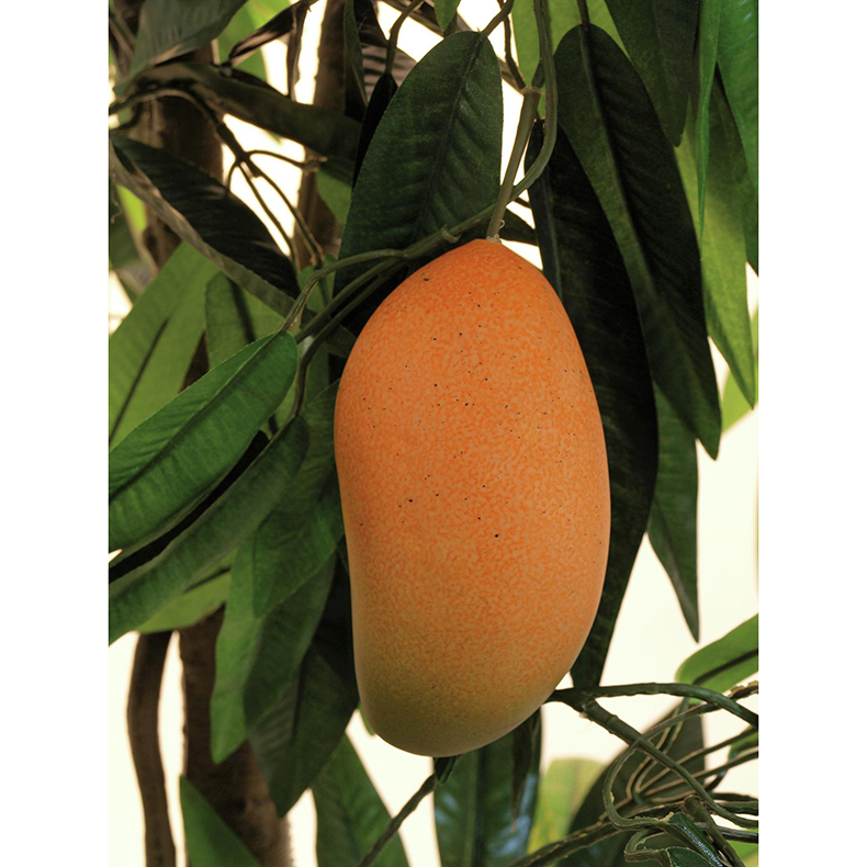 EUROPALMS 180cm Mangopuu hedelmillä. Mango Tree with Fruits. Successful imitation of a mango tree with a tropical look
