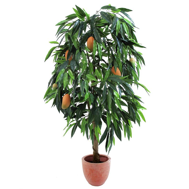 EUROPALMS 180cm Mangopuu hedelmillä. Ma, discoland.fi