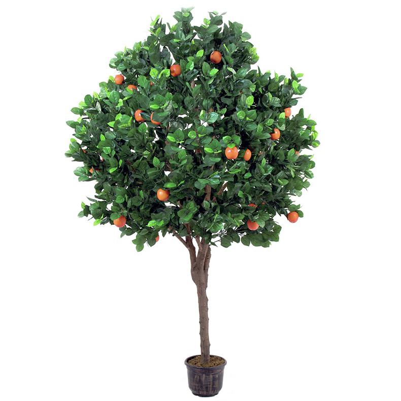 EUROPALMS 280cm Omenapuu omenoilla Puuta, discoland.fi