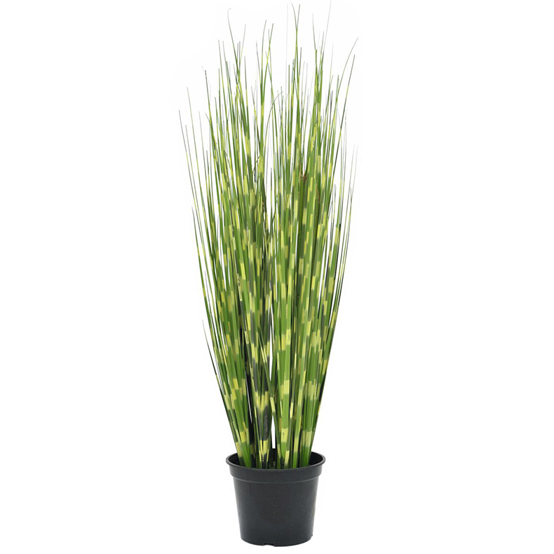 EUROPALMS 60cm Seepraruoko. Zebra reed. Very realistic, ideal for demanding decoration ideas