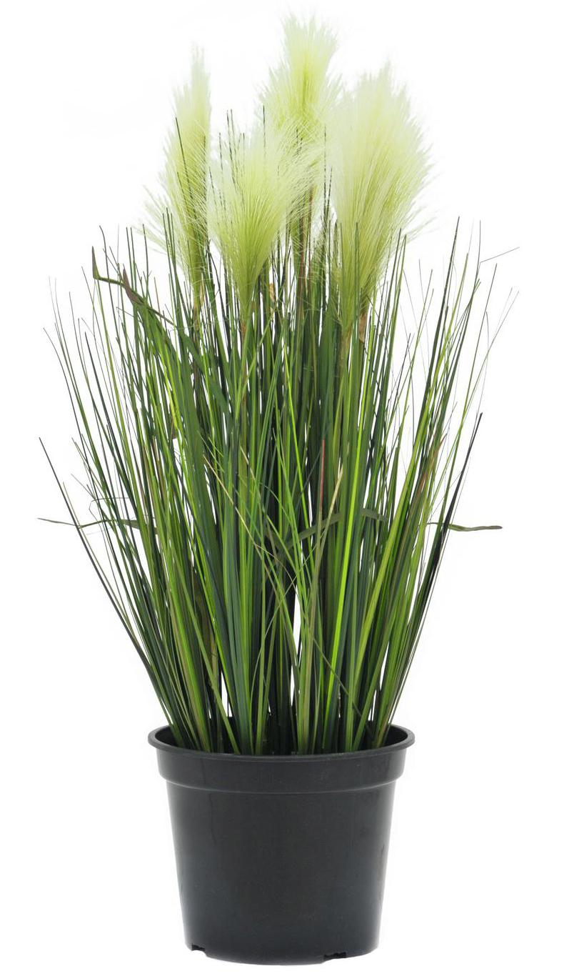 EUROPALMS 60cm Sulkaruoho väri valkoinen. Feather grass, white. Very realistic, ideal for demanding decoration ideas