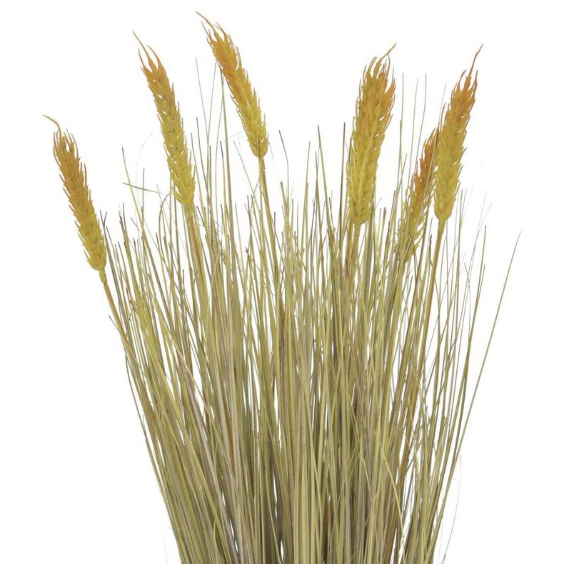 EUROPALMS 60cm Kypsä vehnä deco-ruukussa, valmis niitettväksi.