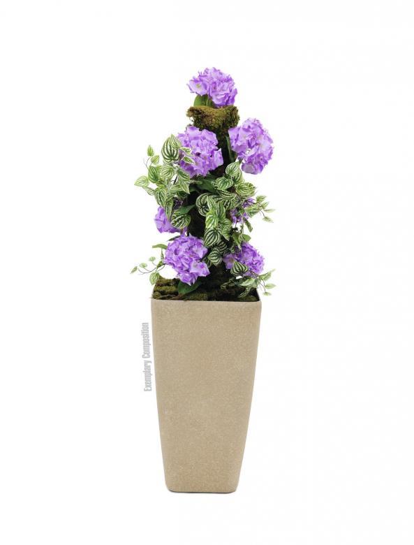 EUROPALMS 76cm Hortensia laventelinsininen, aidot hortensiat on Itä-Aasiassa ja Amerikassa luonnonvaraisena kasvava kukkakasvisuku, jossa on 70–75 lajia, joihin kuuluu köynnöksiä ja pieniä pensaita. Niitä kasvatetaan koristekasveina suurten kukintojensa takia. Suurin osa lajeista kasvaa luonnonvaraisina Kiinassa ja Japanissa. Hortensian kukat ovat yleensä valkoisia, punaisia tai sinertäviä. Joidenkin lajien kukkien väri riippuu maaperän happamuudesta tai alumiinipitoisuudesta. Hortensiat ovat suosittuja kasveja muun muassa kuvioistutuksissa.