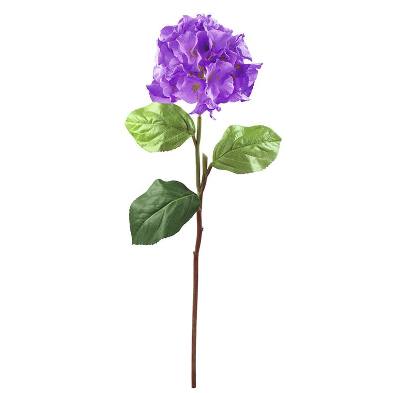 EUROPALMS 76cm Hortesia laventelinsinine, discoland.fi
