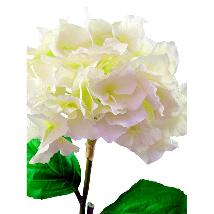 EUROPALMS 76cm Hortesia kermanvärinen. Hydrangea spray, cream