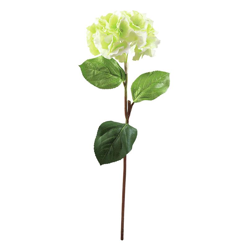 EUROPALMS 76cm Hortesia vihreä. Hydrang, discoland.fi