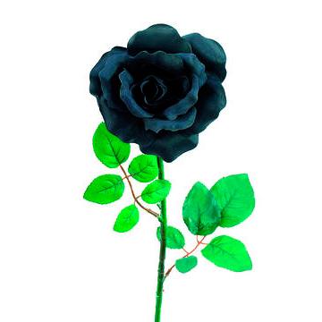 EUROPALMS 65cm Ruusu musta-tummansininen, discoland.fi