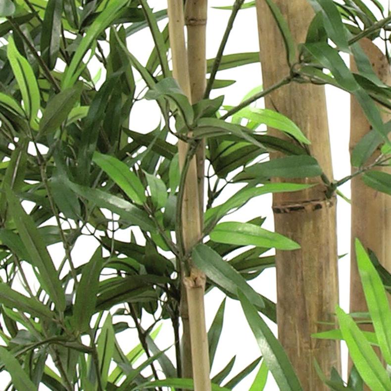 EUROPALMS 205cm Bambupuu aidoilla rungoilla, valettu deco-ruukkuun.