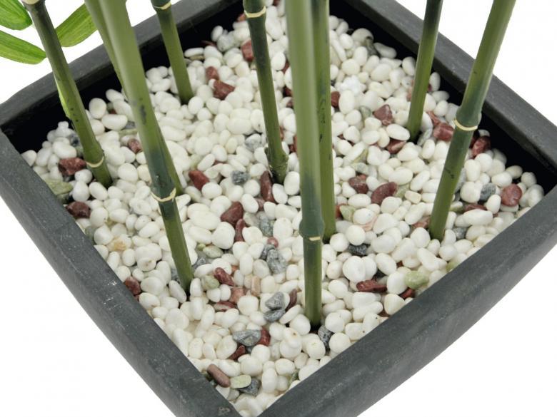 EUROPALMS 120cm Bamburuokoa tummaa deco-kulhossa, aidot bambut on heinäkasvien ryhmä, johon kuuluu noin 90 sukua ja näihin yhteensä yli tuhat lajia, yksittäinen bambu versoo suoraan maasta vuosittain useita versoja, ja niiden halkaisija riippuu emokasvin iästä, pituutta tulee päivittäin lisää. Bambut, kuten muutkin heinäkasvit, kasvavat maan rajasta eikä kärjestään. Bambuja kasvaa villinä laajalla alueella ja viljeltynä lähes kaikkialla. Laajimmat bambumetsät ovat Aasian vuoristoissa, joissa bambuja kasvaa jopa 4 000 metrin korkeudessa. Bambun varsi on erittäin kuitupitoinen, ja sitä käytetään rakennusmateriaalina, polttopuuna, työkalujen ja tarveastioiden valmistukseen sekä tekstiilien raaka-aineena. Nuoria versoja syödään keitettyinä. Isopandat ja kultapandat käyttävät bambuja pääravintonaan