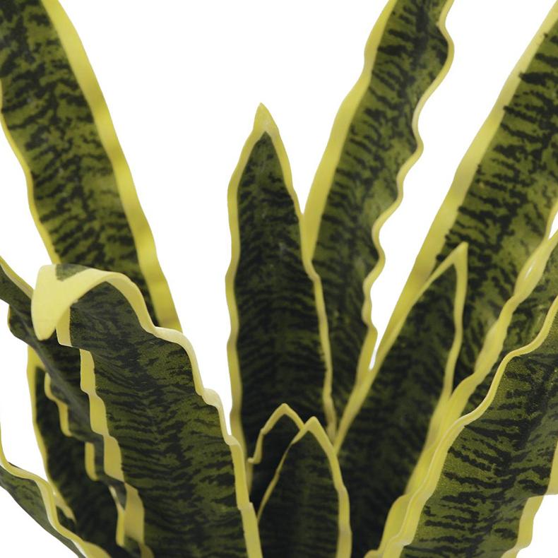 EUROPALMS 50cm Anopinkieli, vihreä-keltainen, pehmoista muovisekoitetta (EVA), sopii myös ulkokäyttöön. Ainavihannat Anopinkielet on kotoisin trooppisesta Afrikasta, Madagaskarista ja Etelä-Aasiasta.