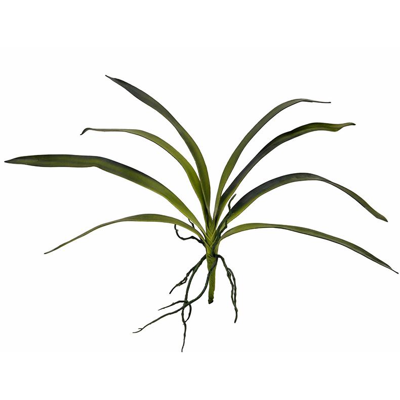 EUROPALMS 45cm Orkidean lehdet ilmajuuri, discoland.fi
