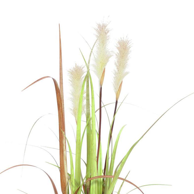 EUROPALMS 120cm Villinä kasvanut koristeruoho auringon haalistamissa väreissä vihreä-ruskea.
