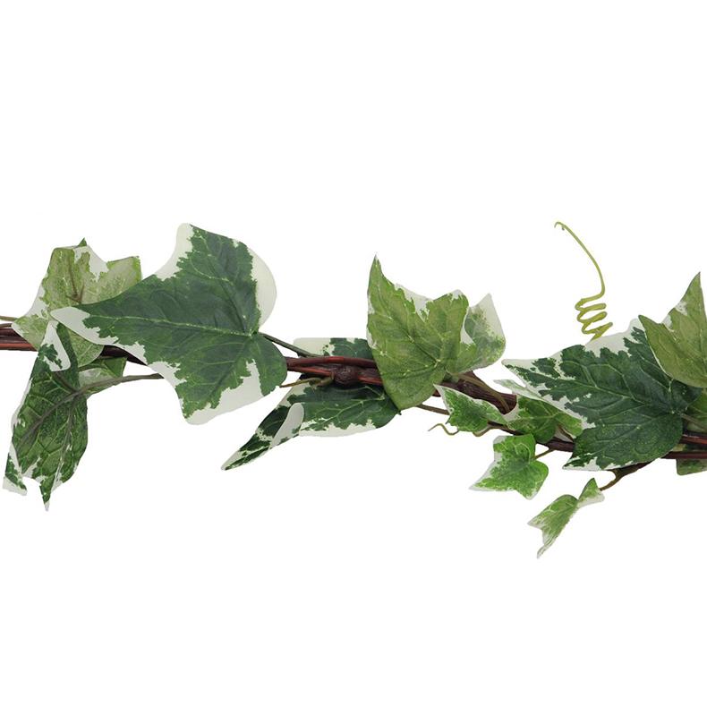 EUROPALMS 350cm Muraattiköynnös, vihreä-valkoinen, helppo taivuttaa vaikka hääpöydän koristeeksi.