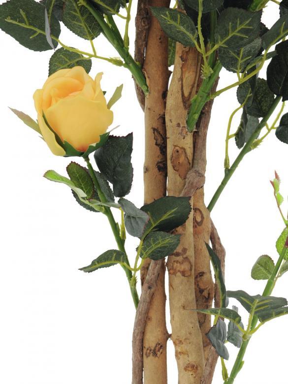 EUROPALMS 125cm Ruusupensas Deluxe, erittäin näyttävä. Ystävällisen ja miellyttävän ilmapiirin luoja. 411 vihreää lehteä, 22 oranssinkeltaista kukkaa.