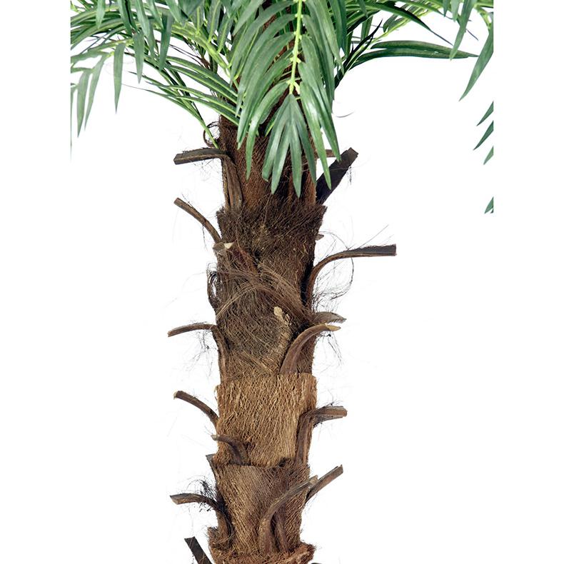 EUROPALMS 180cm Kuningas Kookospalmu, keinotekoinen runko kääritty kookosparkkikuidulla, 23 lehvää. Kookospalmu tunnetaan hedelmästään kookospähkinästä, se kasvaa jopa 40 metrin pituiseksi. Kookospalmun runko on haaraton, ja lehdet lähtevät tähtimäisesti yhdestä pisteestä. Palmu on kotoisin Kaakkois-Aasian rannikoilta Malesia, Indonesia, Filippiinit ja Melanesia. Uskotaan että sen luonnonmuodot ovat levinneet merivirtojen mukana jo esihistoriallisena aikana. Nykyisin sitä viljellään laajasti tropiikissa ja subtropiikissa. Kookospalmu on mielenkiintoinen ja tavallisuudesta poikkeava katseenvangitsija joko yksittäiskasvina tai ryhmänä.