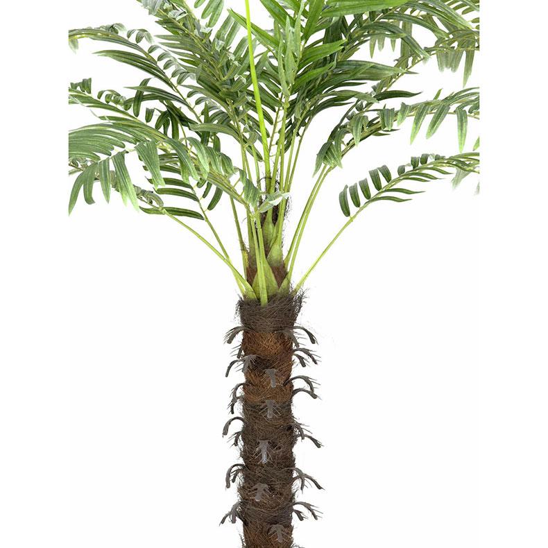 EUROPALMS 160cm Kookospalmu Keinotekoinen runko kääritty kookosparkkikuidulla, 18 lehvää, puutarhurin ruukulla. Kookospalmu tunnetaan hedelmästään kookospähkinästä, se kasvaa jopa 40 metrin pituiseksi. Kookospalmun runko on haaraton, ja lehdet lähtevät tähtimäisesti yhdestä pisteestä. Palmu on kotoisin Kaakkois-Aasian rannikoilta Malesia, Indonesia, Filippiinit ja Melanesia. Uskotaan että sen luonnonmuodot ovat levinneet merivirtojen mukana jo esihistoriallisena aikana. Nykyisin sitä viljellään laajasti tropiikissa ja subtropiikissa. Kookospalmu on mielenkiintoinen ja tavallisuudesta poikkeava katseenvangitsija joko yksittäiskasvina tai ryhmänä.