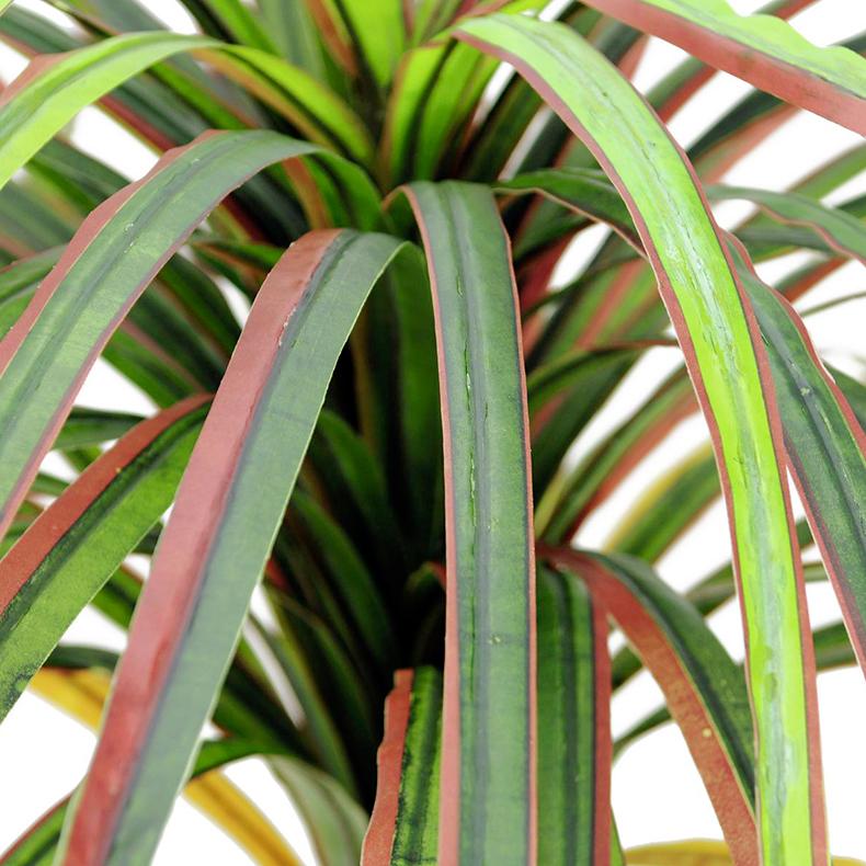 EUROPALMS 170cm Traakkipuu, punavihreät itsemuotoutuvat lehdet, luonnollisesti taivutettu tekorunko, istutusruukussa sammal päällyste.