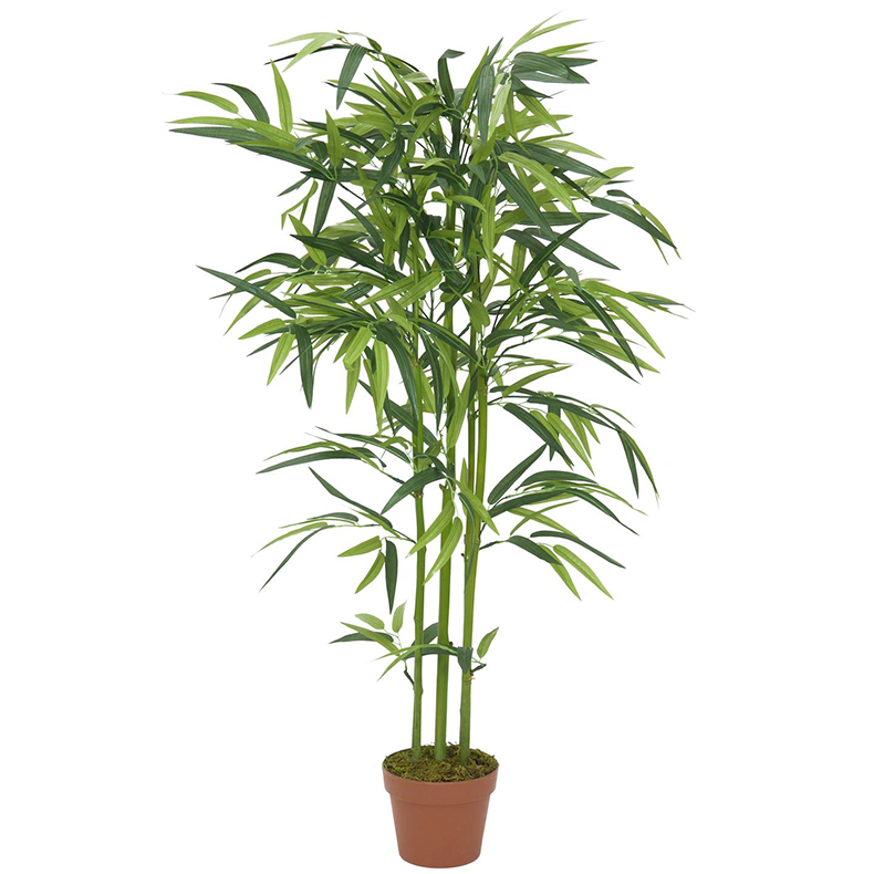 EUROPALMS 120cm Bambu vihreillä ruo'o, discoland.fi