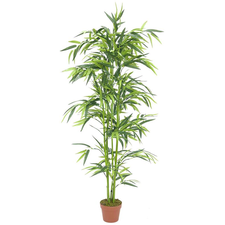 EUROPALMS 150cm Bambu vihreillä ruo'o, discoland.fi