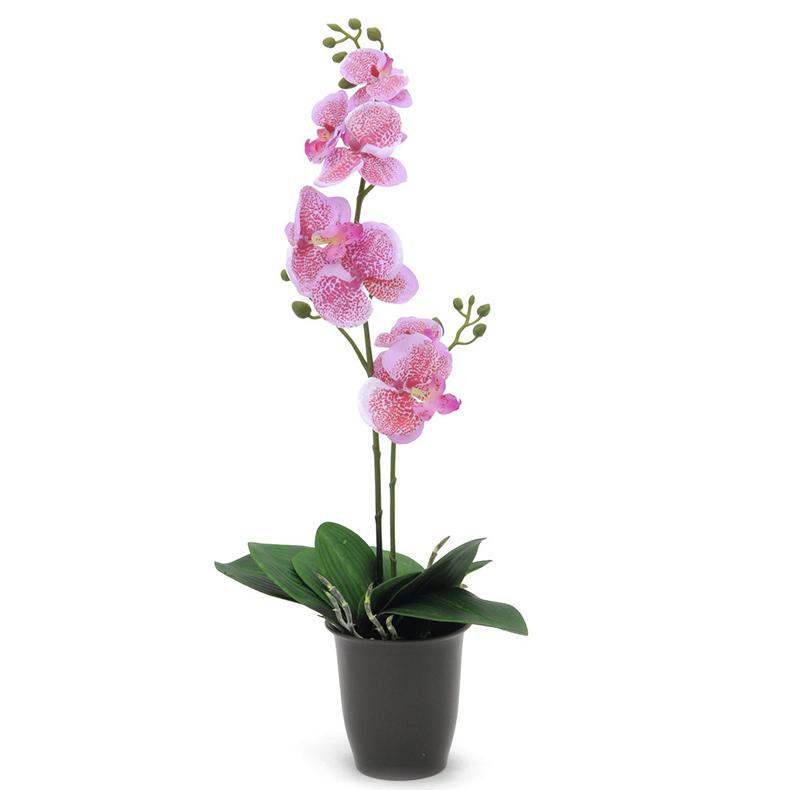 EUROPALMS 57cm Orkidea, väri pinkki, mu, discoland.fi