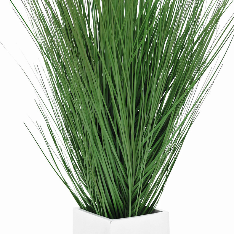 EUROPALMS 95cm Dyyniruoho, valkoinen puinen deco-ruukku.
