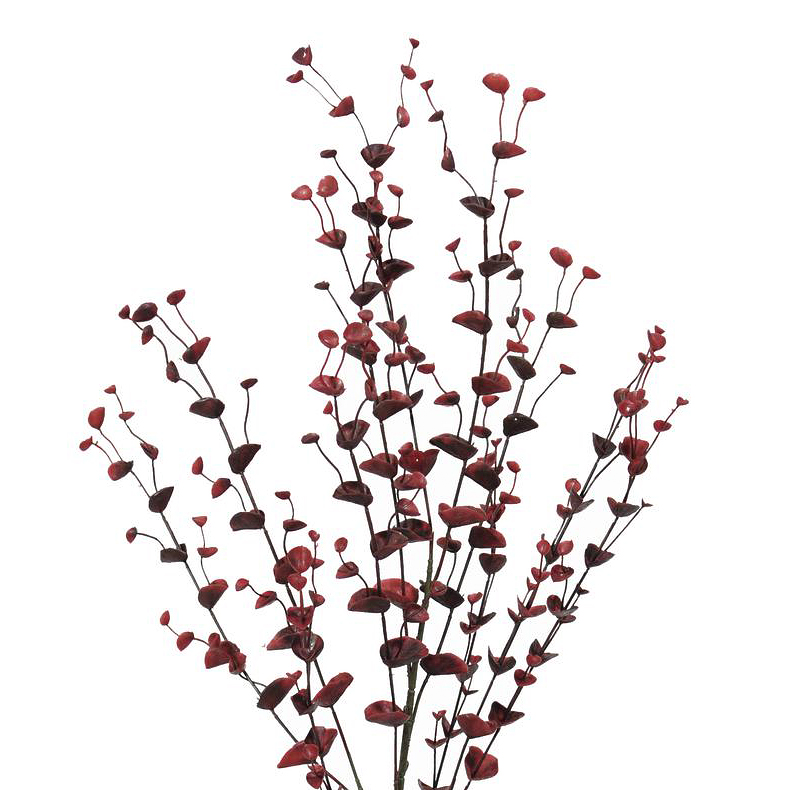 EUROPALMS 110cm Eukalyptusoksa, punainen. Eucalyptus spray, red. Eucalyptus branch ideal for flower arrangements or individually