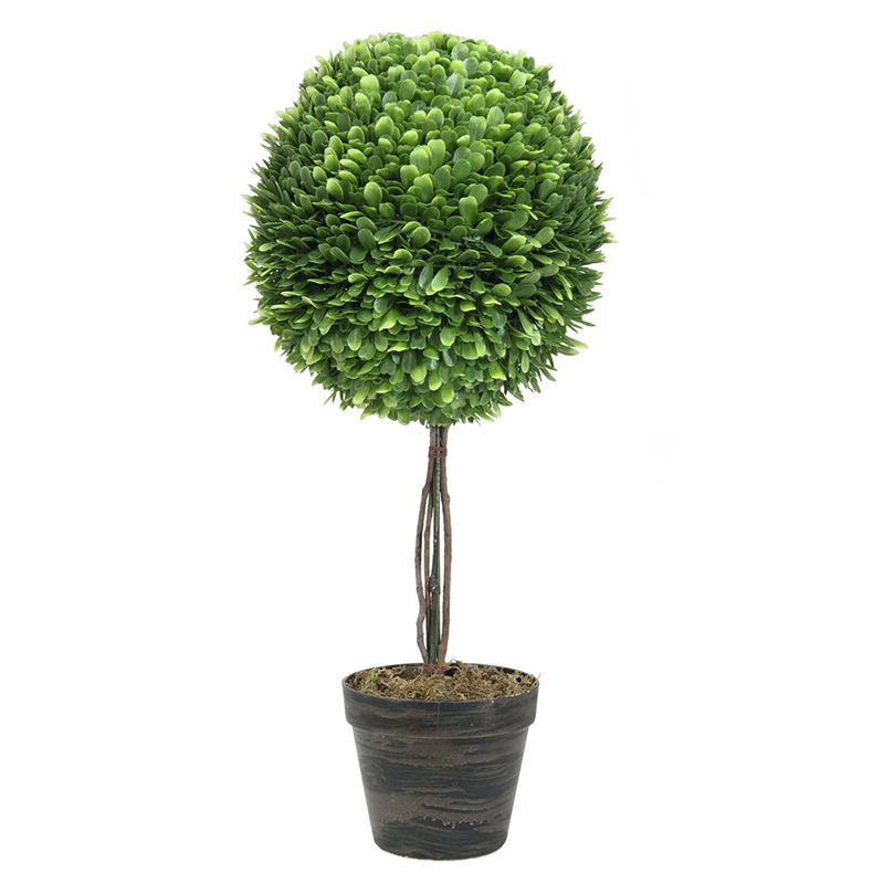 EUROPALMS 60cm Puksipuu, kirkas vihreä Boxwood tree. Lifelike noble boxwood in bright rich green