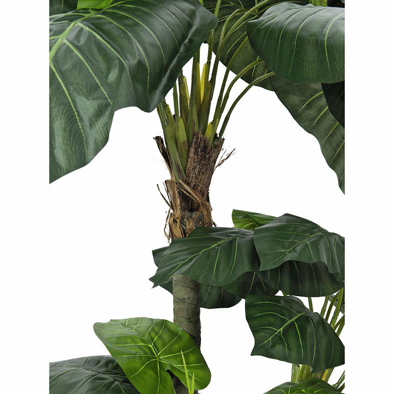 EUROPALMS 175cm Vehkapalmu luxor suurilla lehdillä. Pothos palm luxor. Large leaves are perfect to fill empty corners