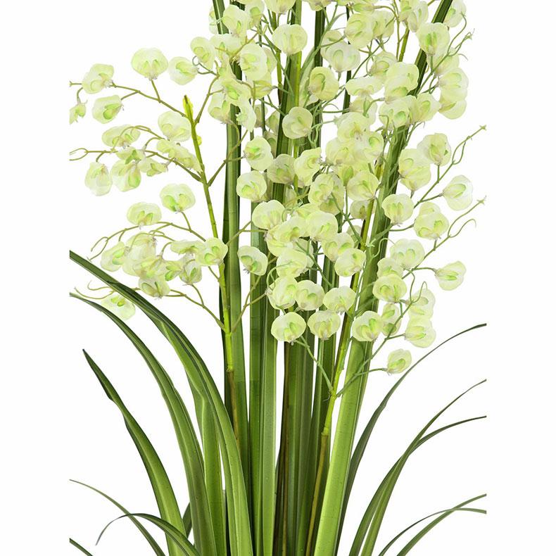EUROPALMS 140cm 'Orkideaheinää' mustassa muoviruukussa, vaikuttavan hieno, väri lime.