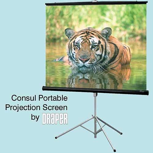 DRAPER Consul 102 cm x 102 cm, Fiberglass matt white, quality, economy, the most popular tripod projection screen for schools