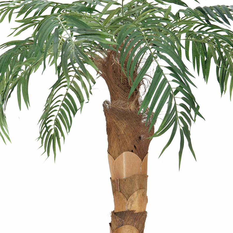 EUROPALMS LOPPU!!190cm Välimerentaatelipalmu kaarevalla rungolla. Phoenix palmtree. Trunk with real palm fiber material, ideal for individual designs