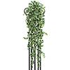 100cm Murattiköynnös vihreä-valkoinen tuuhea 10