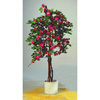 EUROPALMS 240cm Ihmek�ynn�s, punainen. Bougainvillea - for a red touch of color in spring and summer