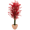 EUROPALMS 180cm Limoviikuna monirunkoinen, punainen, decoration high tech.  Ficus tree red multi tru