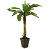 EUROPALMS 220cm Banaanipuu. Banana tree. Natural appearing banana tree with trunk covered by natural