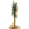 EUROPALMS 270cm Taatelipalmu, slimline. Date palm. Suitable for slim decorations demands