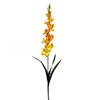 90cm Tarhamiekkalilja oranssi. Gladiolus, orange.