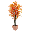 EUROPALMS 180cm Limoviikuna, oranssi, decoration high tech. Ficus tree orange multi trunk. Originall