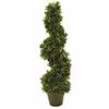 61cm Spiraalipuu modernissa muodossa. Todella laad