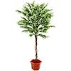 175cm Sääskiruoho, runko liaanipuuta, luonnollis