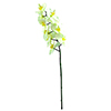 EUROPALMS 70cm Orkidea, v�ri kerma. Orchid spray, cream