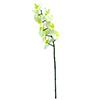 70cm Orkidea, väri kerma. Nykyisten orkideoiden e