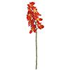 70cm Orkidea, väri oranssi, aitojen nykyisten ork