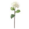 76cm Hortesia kermanvärinen. Hydrangea spray, cre