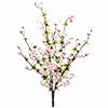 60cm Kirsikanoksa pinkki.